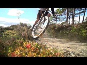 Bicicletas Canyon: Canyon Spectral AL 9.9 EX - Features and Facts - English
